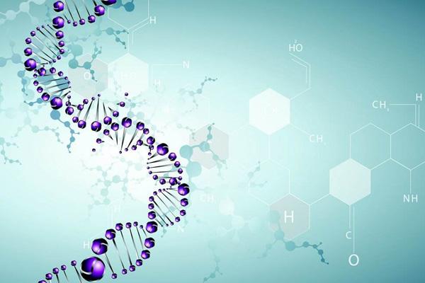 BIOG全血DNA提